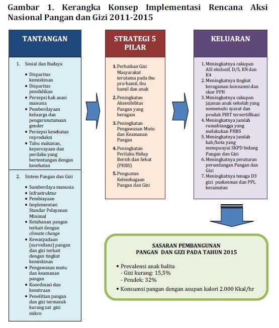 kerangka konep implementasi RAN pangan dan gizi 2011-2015