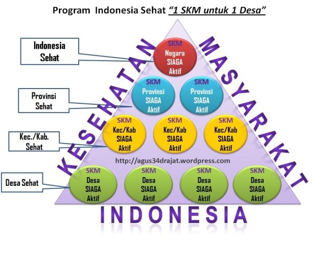 "program indonesia sehat ""satu skm satu desa"""