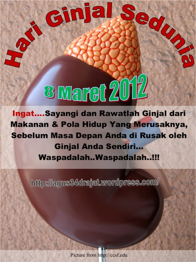 Hari Ginjal Sedunia 2012